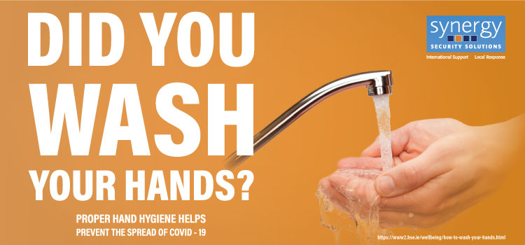 Did you wash your Hands - Poster